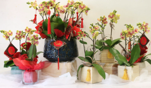 IELTS Speaking Part 1 Topic Flowers
